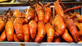 Очень вкусная зажаренная креветка в подносе Стоковое фото RF