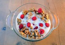 Очень вкусная, здоровая еда - granola с плодоовощами и молоко Стоковые Фото