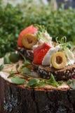 Очень вкусное канапе с семгами, творогом, оливкой с микро- зелеными цветами на темной предпосылке Холодная закуска Стоковая Фотография