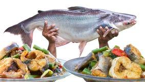 Очень вкусное карри рыб Стоковые Изображения RF