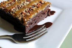 Очень вкусное пирожное fudge Стоковое фото RF