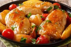 Очень вкусное филе цыпленка испекло с персиками, томатами, луками стоковое изображение rf