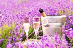 Очень вкусное шампанское над полем лаванды Стоковое Изображение