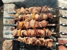 Очень вкусное shish kebab!!! Стоковые Фотографии RF