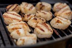 Очень вкусные горячие scallops моря жаря на угле жарят Стоковое Фото