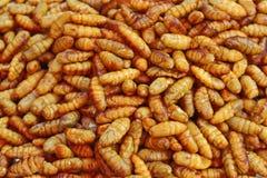 Очень вкусные зажаренные Silk черви - еда улицы в Таиланде Стоковое Изображение RF