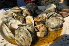 Очень вкусные морепродукты - плита сваренных мидий с травами в отваре  стоковое изображение