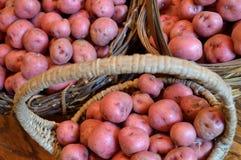 Очень вкусные новые картошки в корзинах на деревянной таблице Стоковое Фото