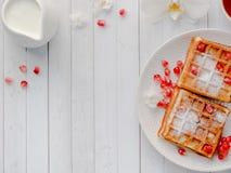 Очень вкусные рт-моча венские waffles с семенами меда и гранатового дерева на белом космосе экземпляра плиты Стоковые Фото