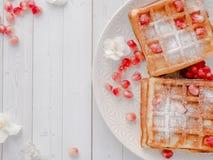 Очень вкусные рт-моча венские waffles с семенами меда и гранатового дерева на белом космосе экземпляра плиты Стоковое Фото
