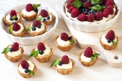 Очень вкусные свежие мини-торты ягод Стоковая Фотография