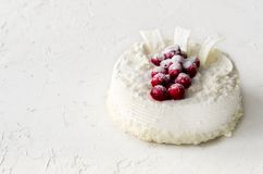 Очень вкусные чизкейки с клюквами, вишнями, хлопьями кокоса и белым шоколадом на светлой конкретной предпосылке стоковая фотография rf