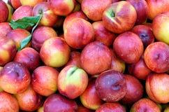 Очень вкусные яблоки на местном рынке Стоковое Фото