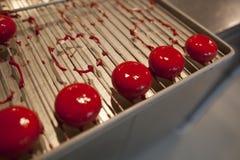 Очень вкусные tartelets заполненные с плодами испеченными на металлическом диске стоковое фото rf
