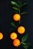 Очень вкусный мандарин Стоковые Фотографии RF