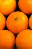 Очень вкусный мандарин Стоковые Фото