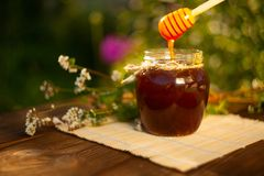 Очень вкусный очень вкусный мед в опарнике на таблице Стоковое Фото