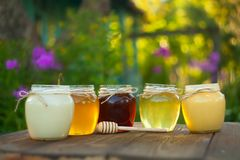 Очень вкусный очень вкусный мед в опарнике на таблице Стоковые Фото