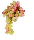 Очень вкусный пук свежих сладостных виноградин стоковые фото