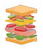 Очень вкусный сандвич с слоями или ингридиенты изолированные на белой предпосылке - обваляйте куски в сухарях, овощи, листья сала иллюстрация вектора