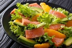 Очень вкусный салат посоленных семг, апельсинов, авокадоа и cl frisee Стоковая Фотография RF
