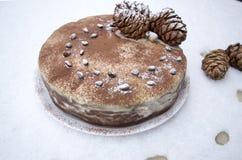 Очень вкусный свежий домодельный торт зимы с гайками и шоколадом сосны Стоковые Изображения