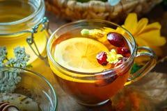 Очень вкусный свежий мед и чашка здорового чая с лимоном и плодами шиповника на деревянном столе Селективный фокус стоковая фотография