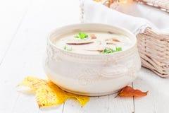 Очень вкусный суп гриба с грибами и петрушкой Стоковая Фотография