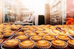 Очень вкусный Хоккаидо испек пирог сыра на подносе в кухне печенья стоковое изображение rf