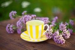 Очень вкусный чай душицы в красивом стеклянном шаре на таблице Стоковые Изображения