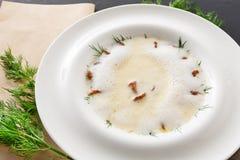 Очень вкусный cream суп с концом грибка меда вверх Стоковое Изображение