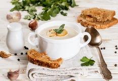 Очень вкусный cream суп с champignons грибов Стоковое фото RF
