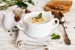 Очень вкусный cream суп с champignons грибов Стоковые Фото