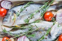 2 очень вкусных всех испеченных рыбы Стоковая Фотография