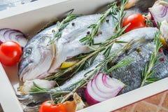 2 очень вкусных всех испеченных рыбы Стоковые Фото