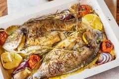2 очень вкусных всех испеченных рыбы Стоковое Изображение RF