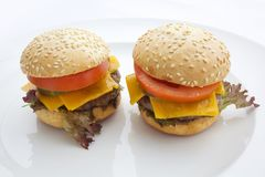 2 очень вкусных гамбургера на белой предпосылке Стоковое фото RF