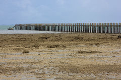 Очень длинний деревянный мост Стоковые Изображения