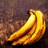 Очень зрелый конец банана вверх - ветвь тухлых зрелых бананов на v Стоковое Изображение RF