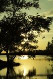 Очень красивейший заход солнца Стоковое Фото