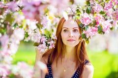 Очень милая девушка с веснушками вокруг цветеня Яблока Стоковые Фотографии RF
