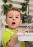 Очень милый детеныш удивил мальчика смотря камеру Стоковое Изображение