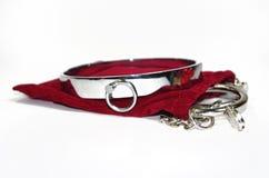 Очень сексуальный и kinky стальной воротник с наручником Стоковая Фотография RF