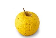 Очень старое золотистое яблоко Стоковое Фото