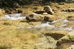 Очистите реку горы стоковое изображение