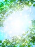 Очистите свежие зеленые иллюстрации предпосылки Стоковое Изображение