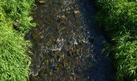 очистьте воду потока принципиальной схемы свежую Стоковые Фото