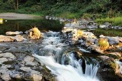 очистьте воду потока принципиальной схемы свежую стоковые фотографии rf