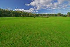 очистьте зеленый цвет поля Стоковое Изображение RF