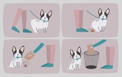 Очистьте после вашей собаки Комплект последовательного шаржа отображает при щенок и его предприниматель очищая вверх его дерьмо В Стоковое Фото